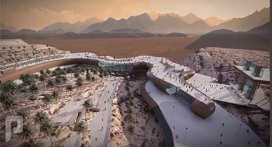 مشاريع سعودية