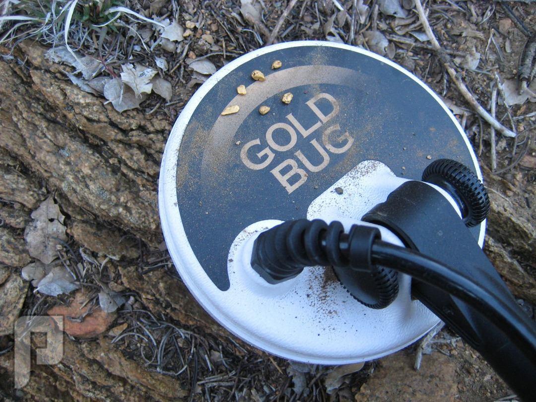 Fisher Gold Bug جهاز صوتي فعال في كشف الذهب والمعادن