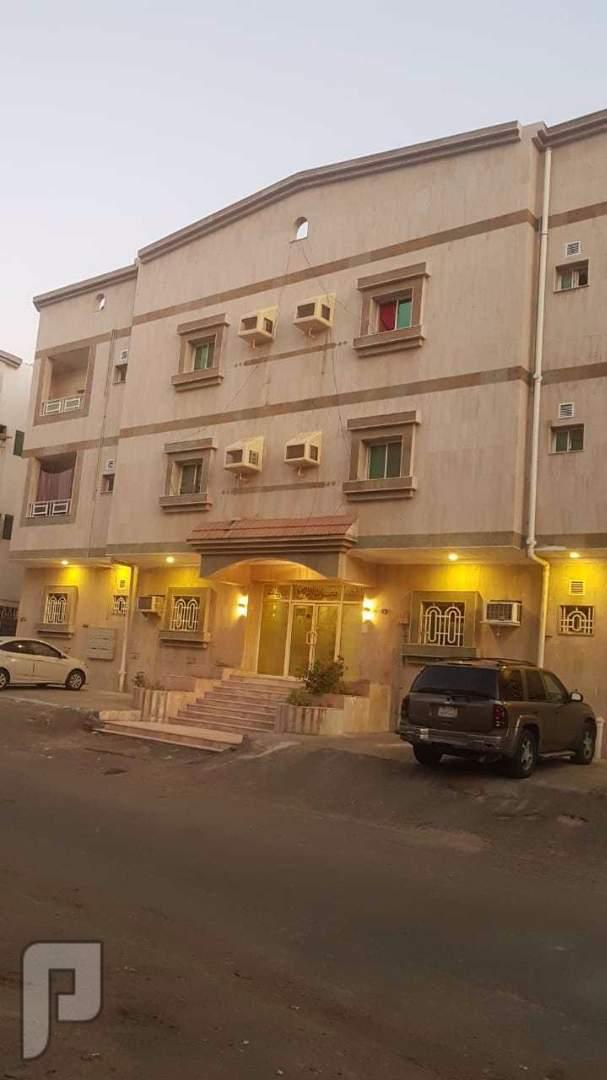 للبيع عماره ف البوادي 13 شقه من غرفتين وصاله