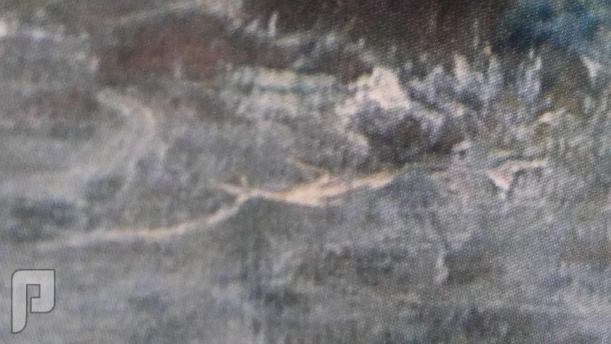 لوحة فنية اوروبية قديمة لفنان مهم