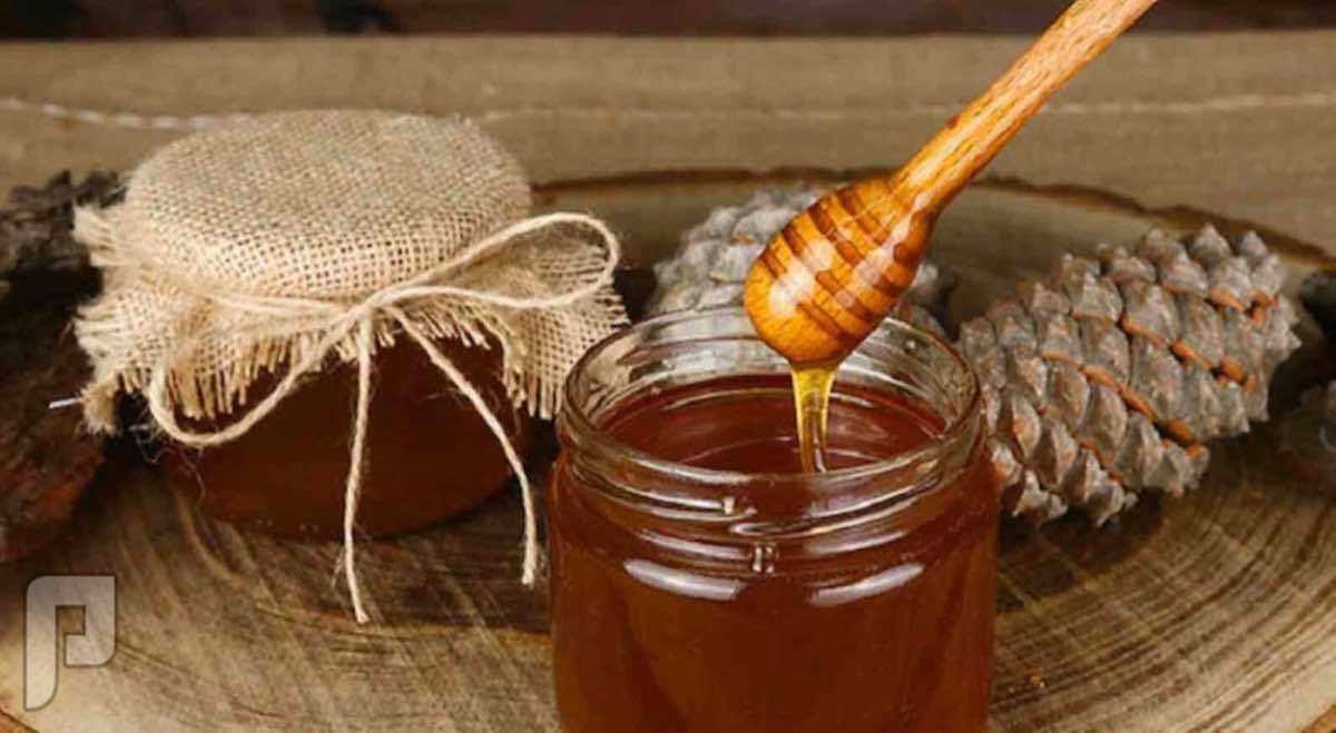عسل صنوبر فاخر جداً من منطقة بحر ايجا