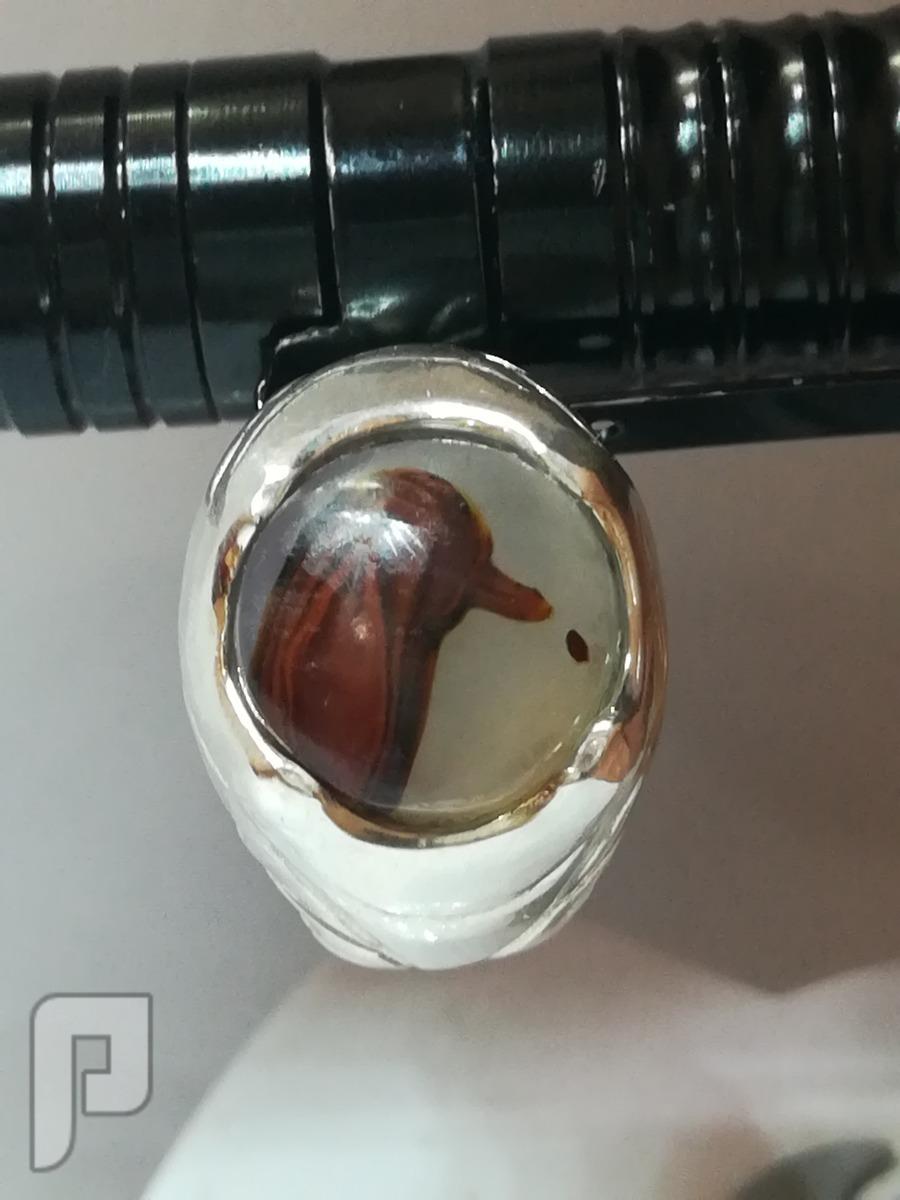 خاتم عقيق يماني مصور طبيعي على شكل طير