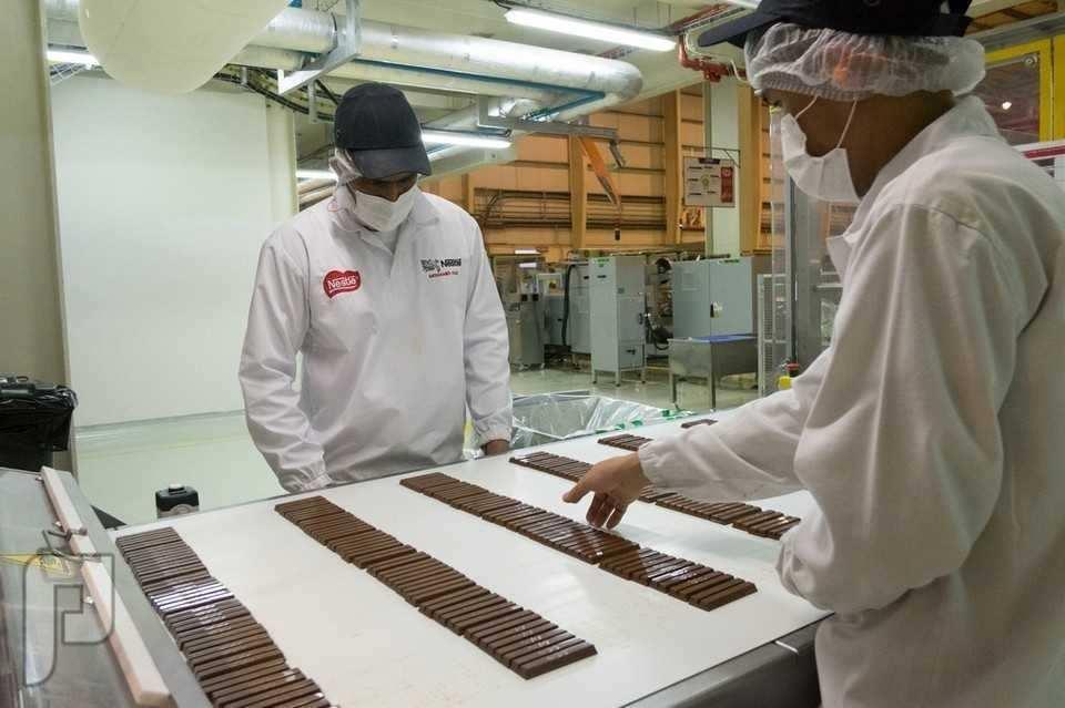 مدير مصنع شوكولاتة خبرة 20 سنة