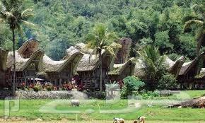 عروض السياحية في اندونيسيا