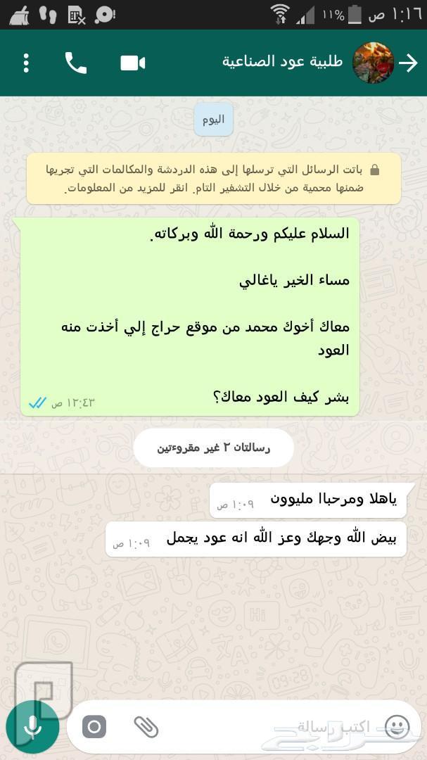 عود مروكي طبيعي محسن