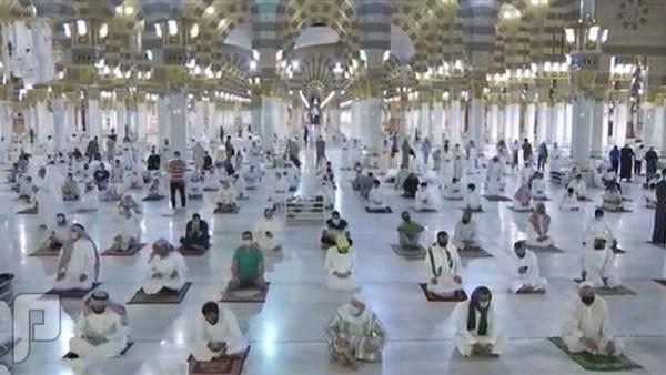 مولد جديد للمسجد النبوي