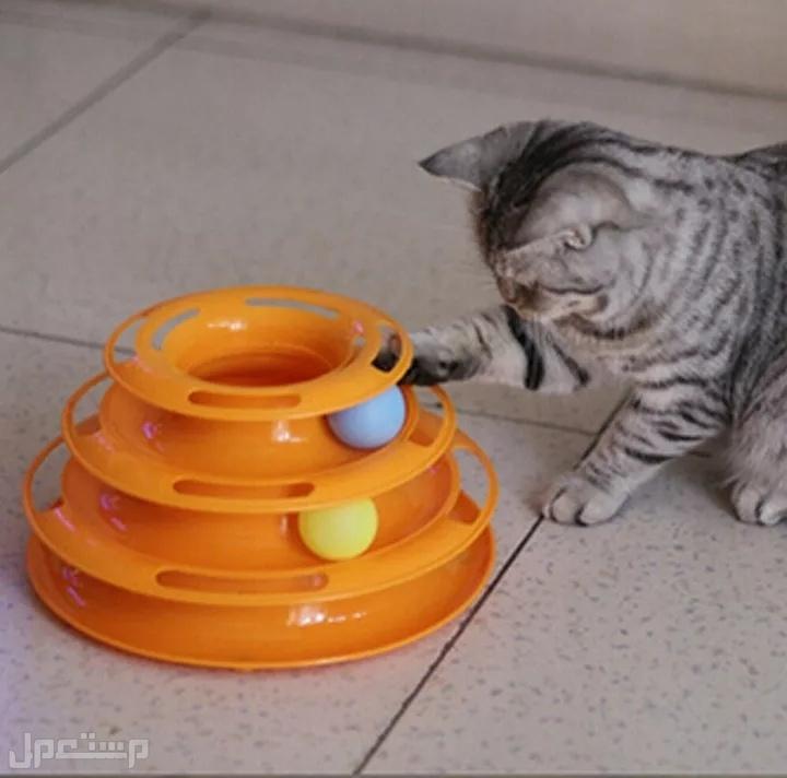 ربطات عنق للقطط بجرس بالوان واشكال مختلفه ولعبة سناره