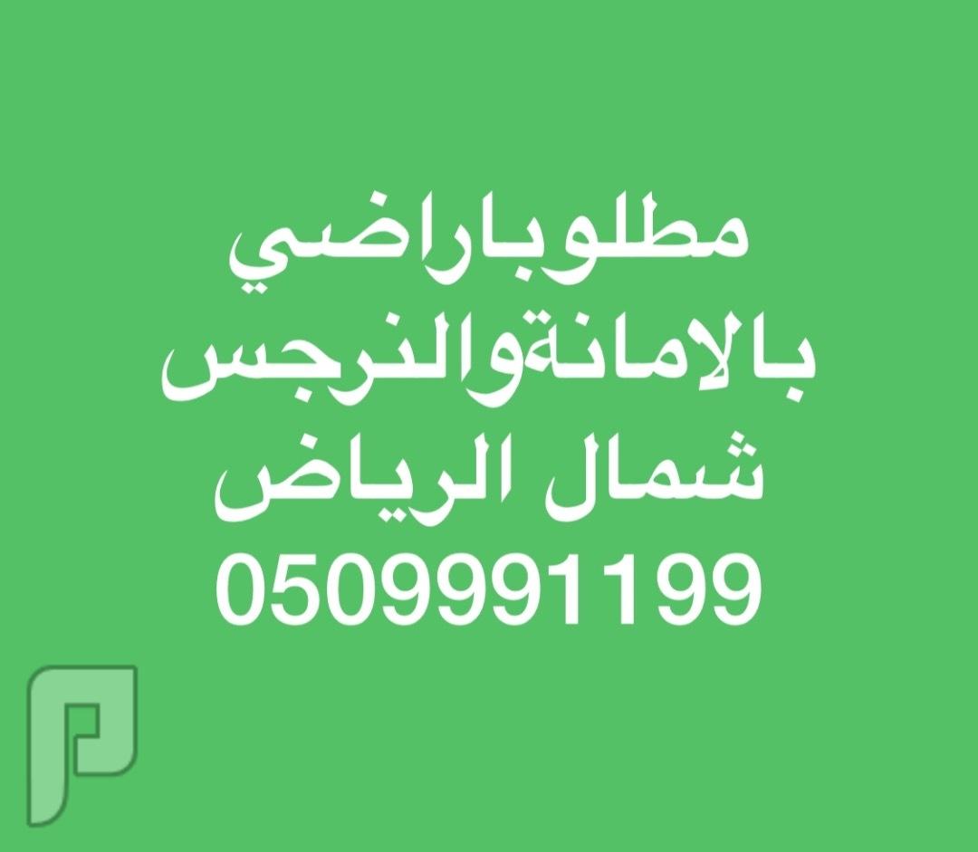 مطلوب للشراء اراضي سكنية و تجارية بشمال الرياض بحي النرجس والامانة