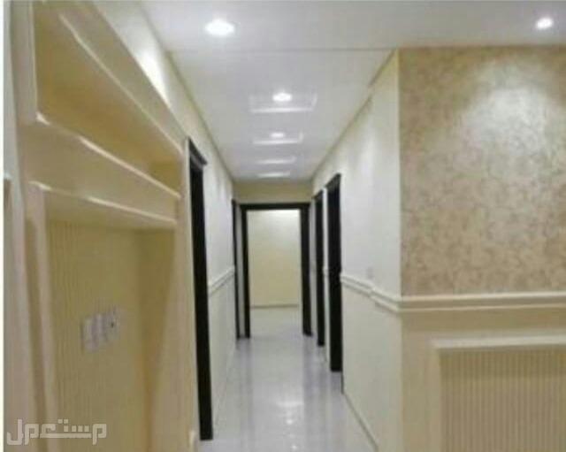 شقه اربع غرف اماميه بمدخلين للتمليك والاستثمار العقاري من المالك مباشره