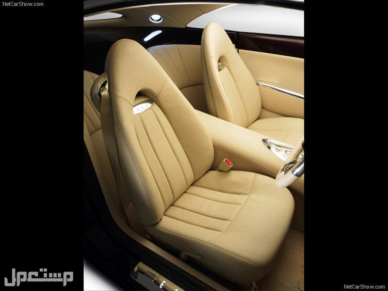 Holden Efijy Concept (2005)