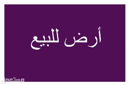 أرض للبيع - الرياض - اليمامة