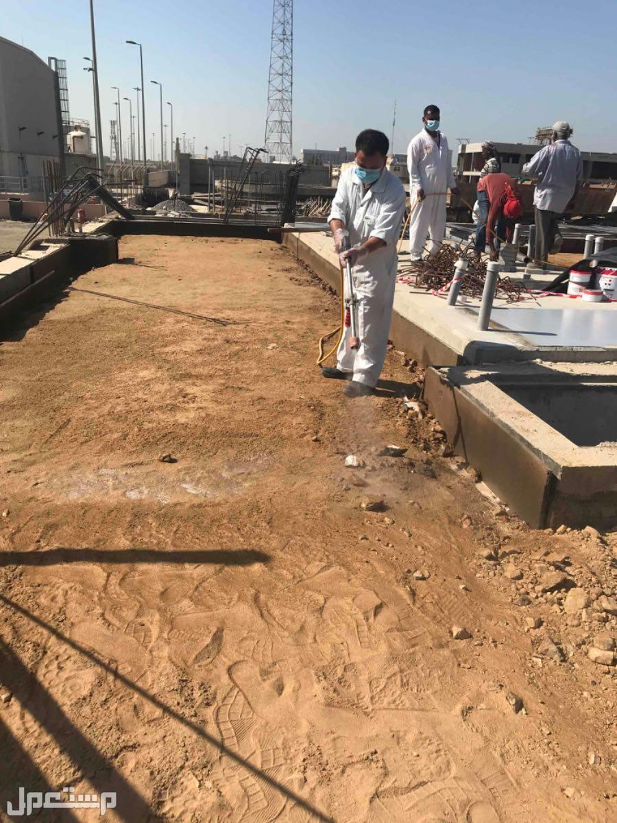 مكافحة حشرات وتعقيم ضد الفيروسات Pest Control الوقاية من النمل الأبيض قبل البناء