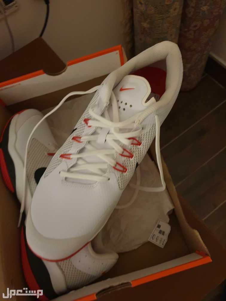Nike Shoea