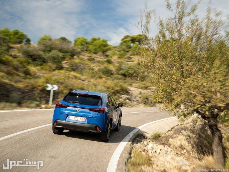 Lexus UX 300e (2021)