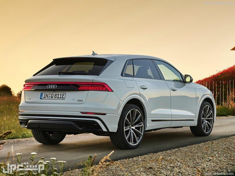 Audi Q8 TFSI e quattro (2021)