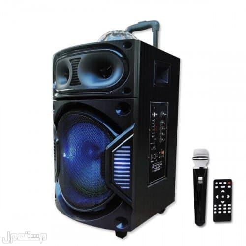 مكبر صوت بلوتوث قوي من DLC كامل الوظائف مناسب للحفلات والمناسبات الخاصة