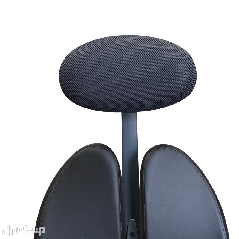 كرسي مكتب-زينيوم