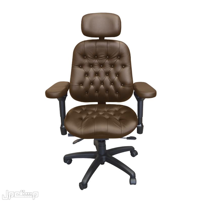 كرسي مكتب-جلد فاخر