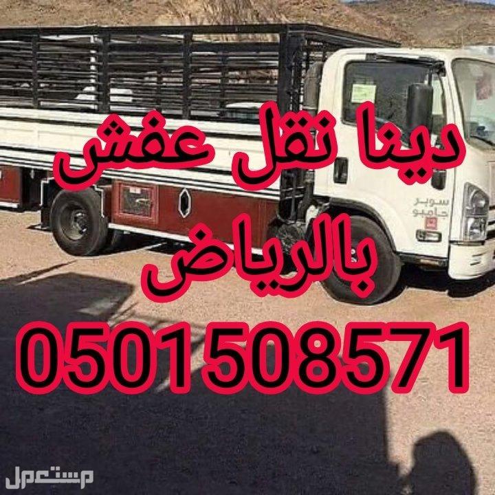 دينا نقل عفش شرق الرياض نقل عفش مع الفك والتركيب 0501508571
