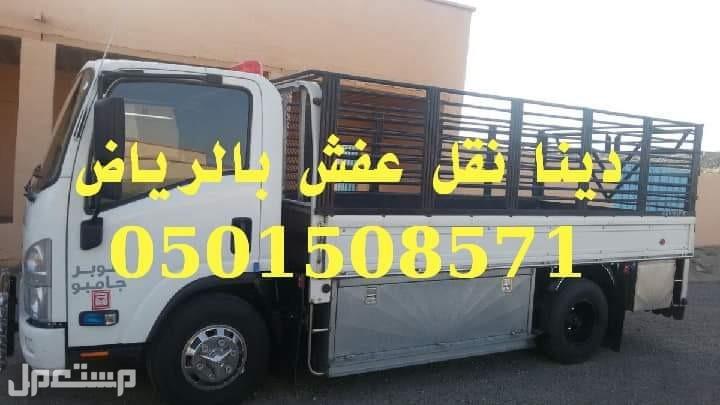 دينا نقل عفش شرق الرياض دينا نقل عفش في جميع أحيا الرياض مع الفك والتركيب 0501508571