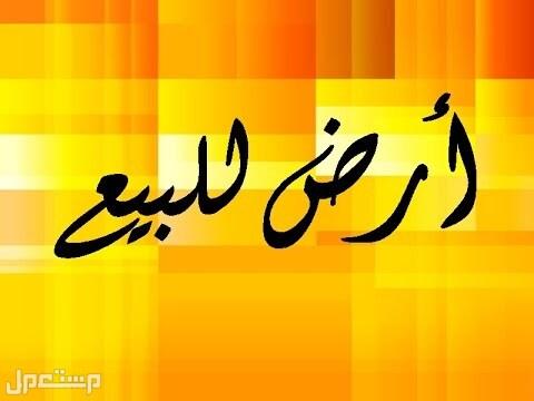 اراضي سكنيه محافظة بارق للبيع