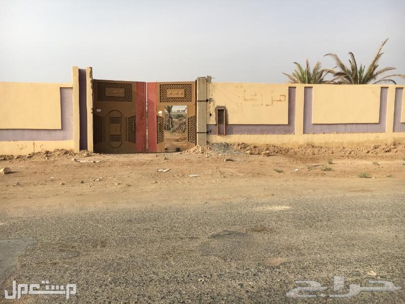 للايجار حوش مسور بحي الرحاب