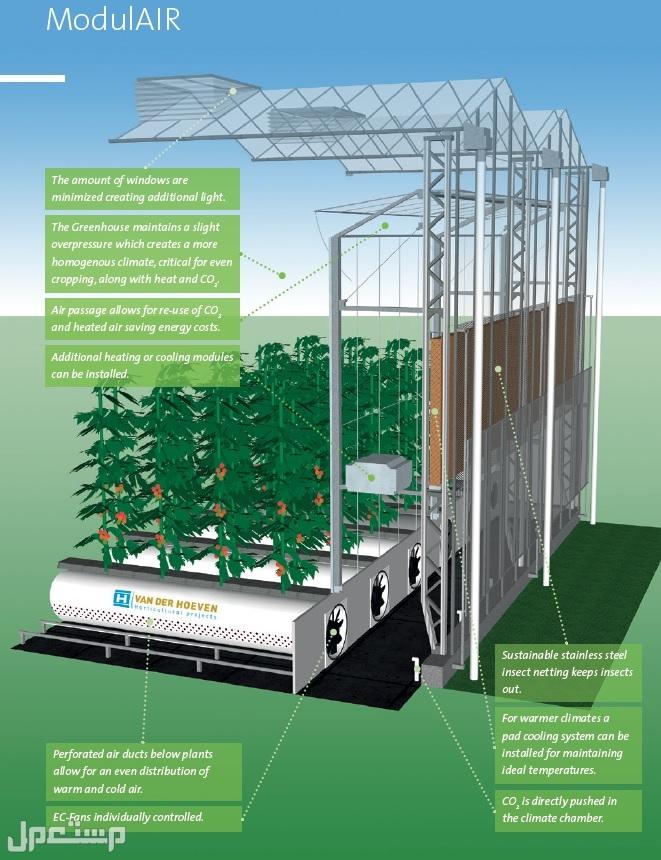 تشغيل المشاريع و الإستثمارات الزراعية الكبري