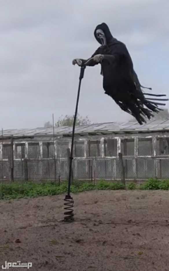 لأصحاب المزارع فزاعة طيور وحيوانات