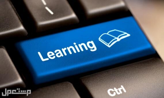 مدرب حاسب آلي للطلاب والموظفين حضورياً وعن بُعد