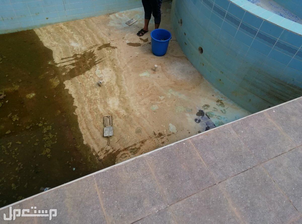 شركة تنظيف وتعقيم ومكافحة حشرات بالطائف