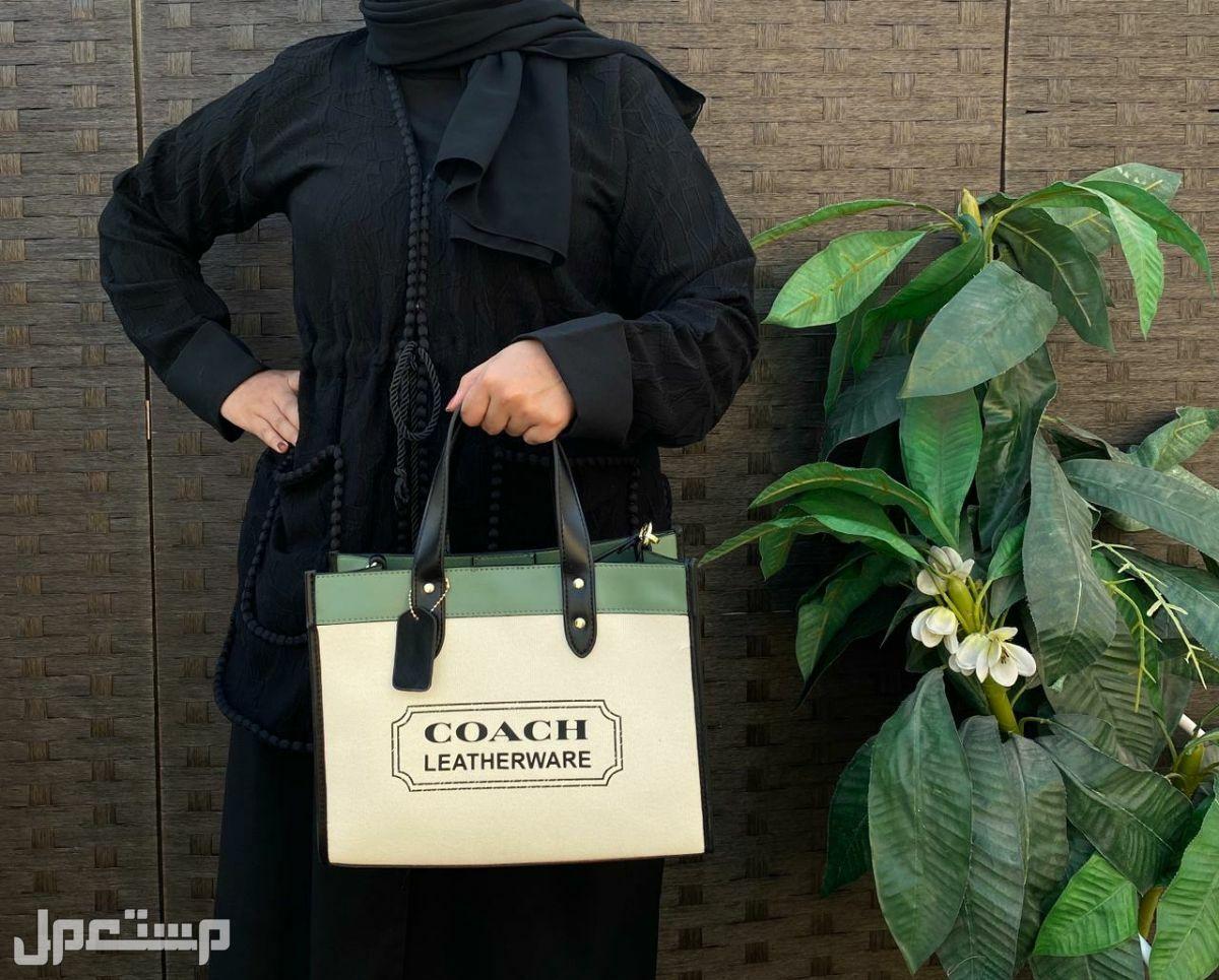 حقائب شنط نسائي ماركة قوتشي