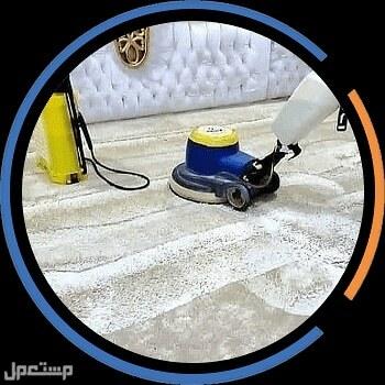 شركة تنظيف منازل وشقق وتنظيف خزانات وغسيل سجاد وموكيت وكنب ومكافحة حشرات ب