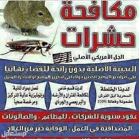 مكافحة حشرات رش مبيدات مكافحة بق الفراش صراصير