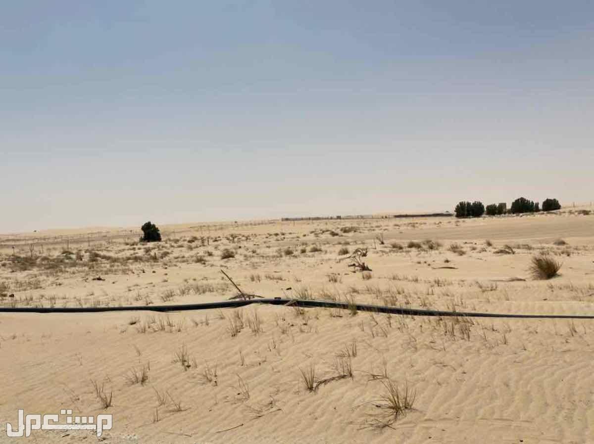 مزراع للبيع غرب المطار الملك فهد الدولي