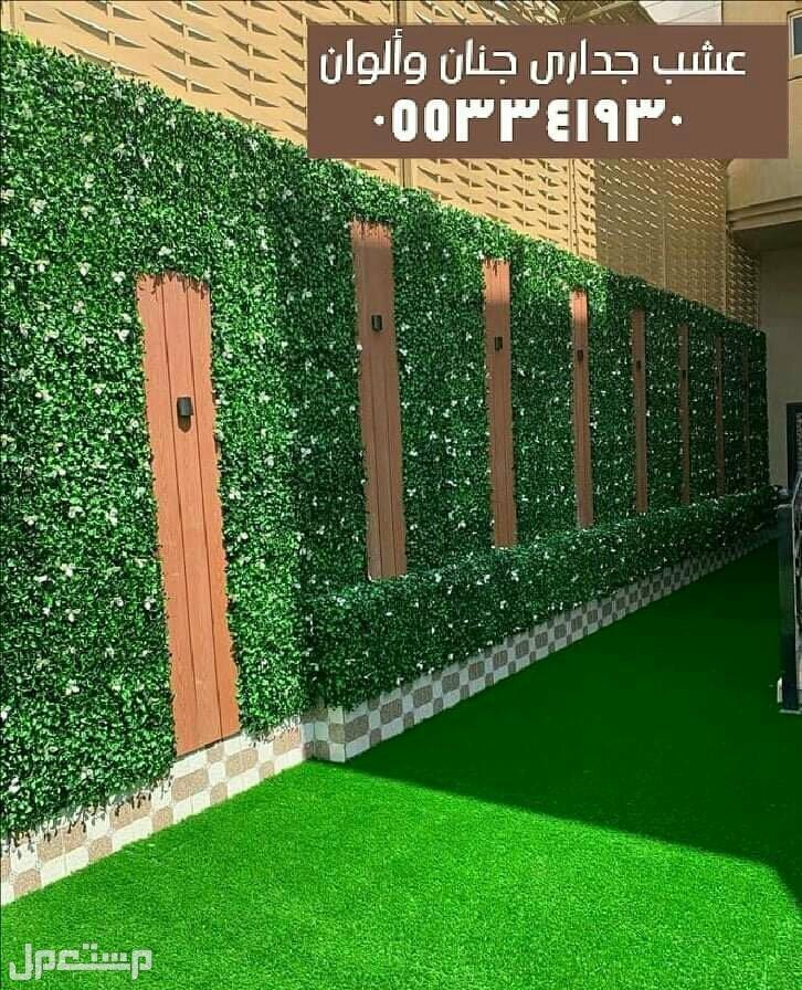 عشب جدارى ممتاز