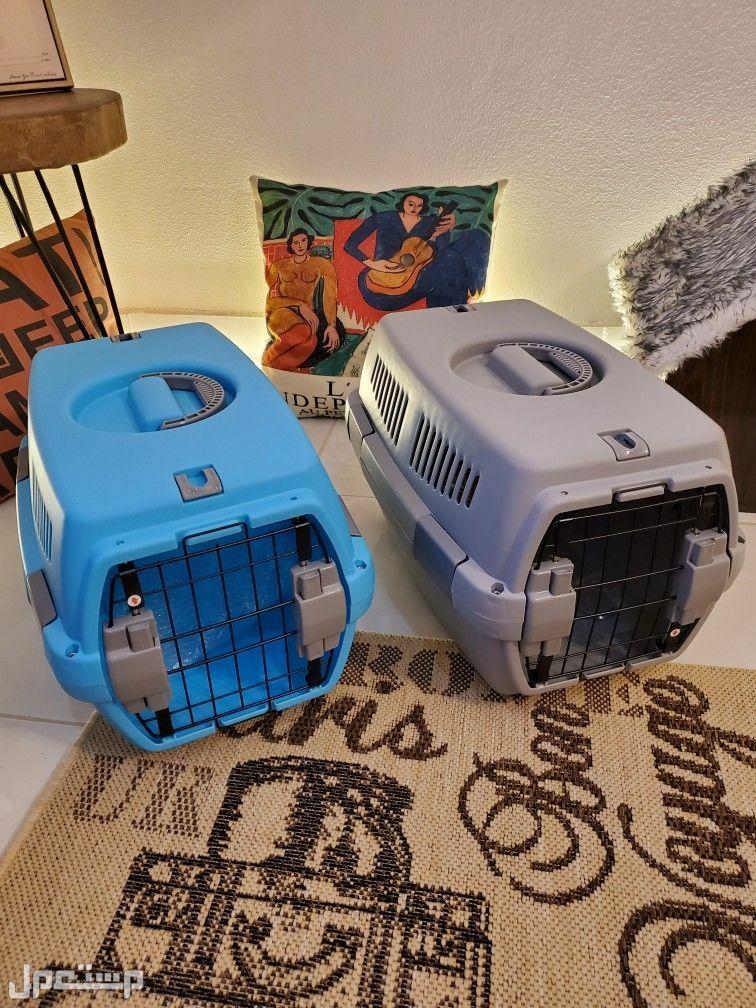العاب قطط ومستلزماتها جديدة