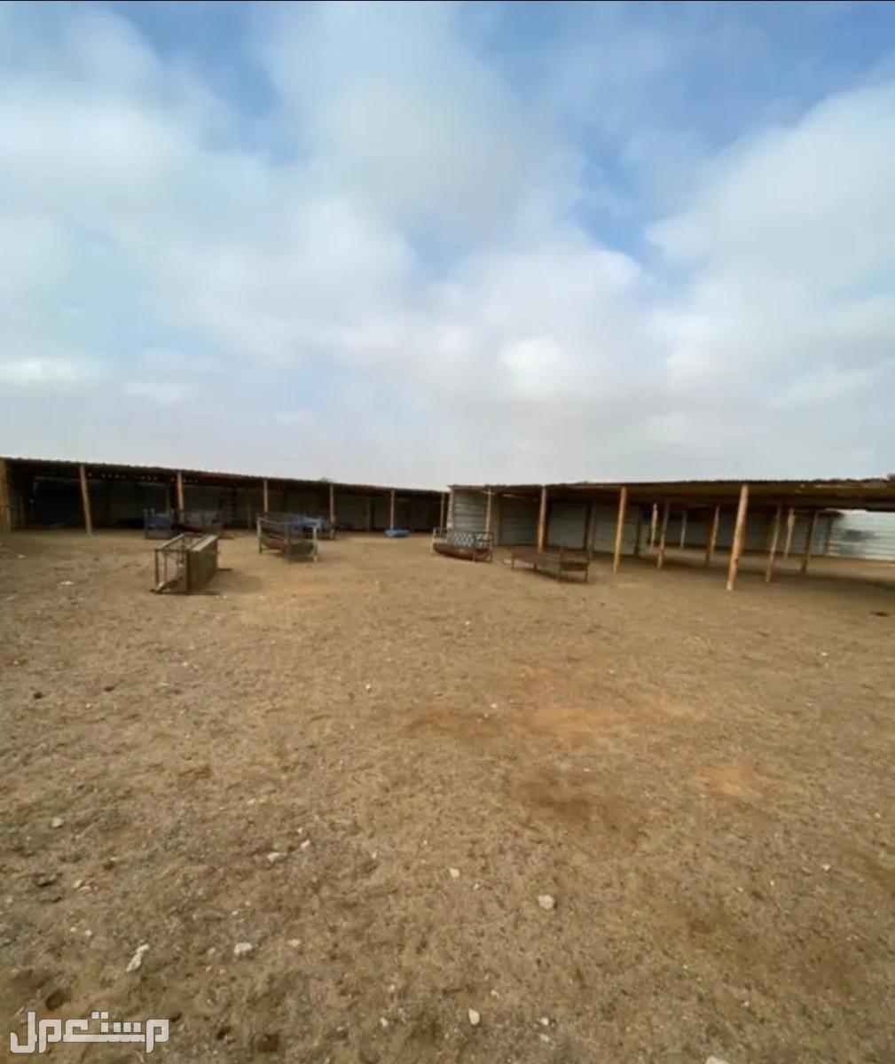 مزرعة بونيكام للإيجار قريبة من سوق العزيزية