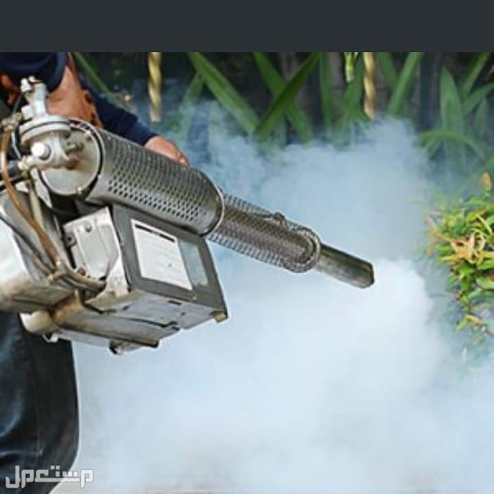 شركه مكافحه حشرات بالرياض رش مبيدات