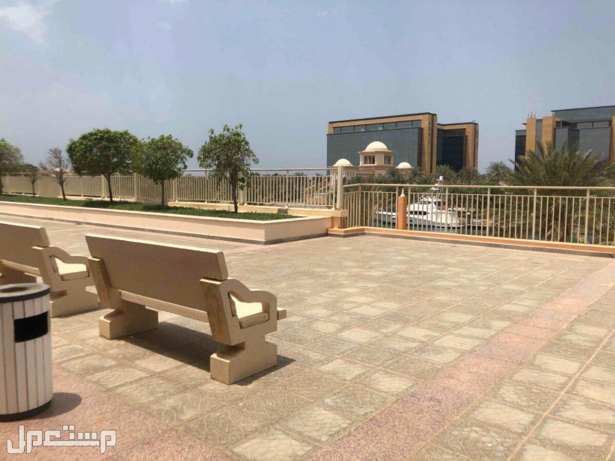 شقق وفلل للايجار اليومي في مدينة الملك عبدالله الاقتصاديه