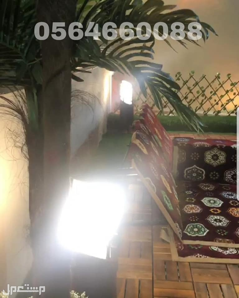 توريد وتركيب ملاعب بثيل صناعي في بلجرشي