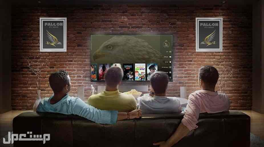 اشتراك فالكون برو TV