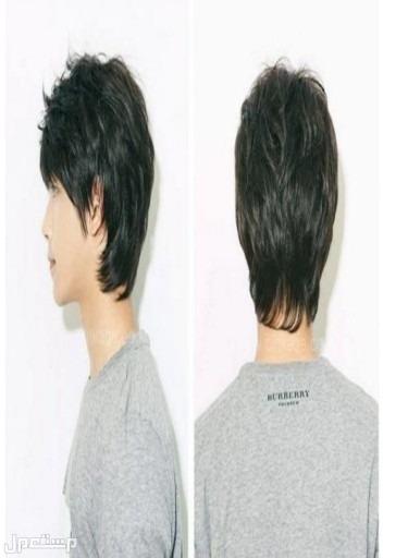 باروكة الشعر