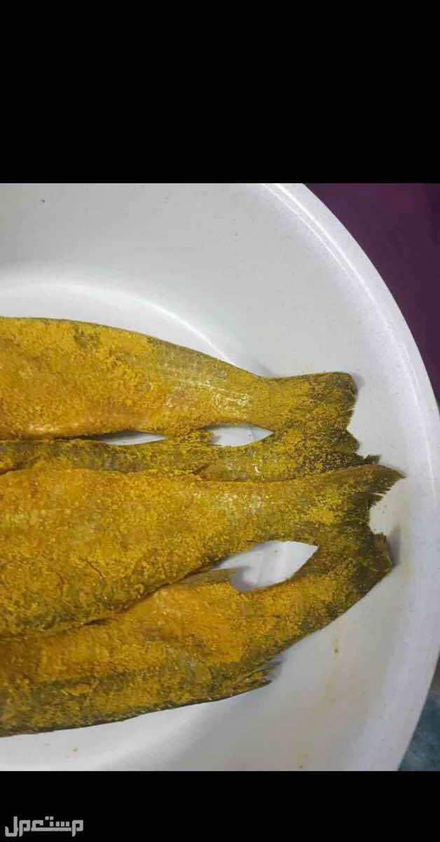 ( الفسيخ ) سمك فلسطيني طازج