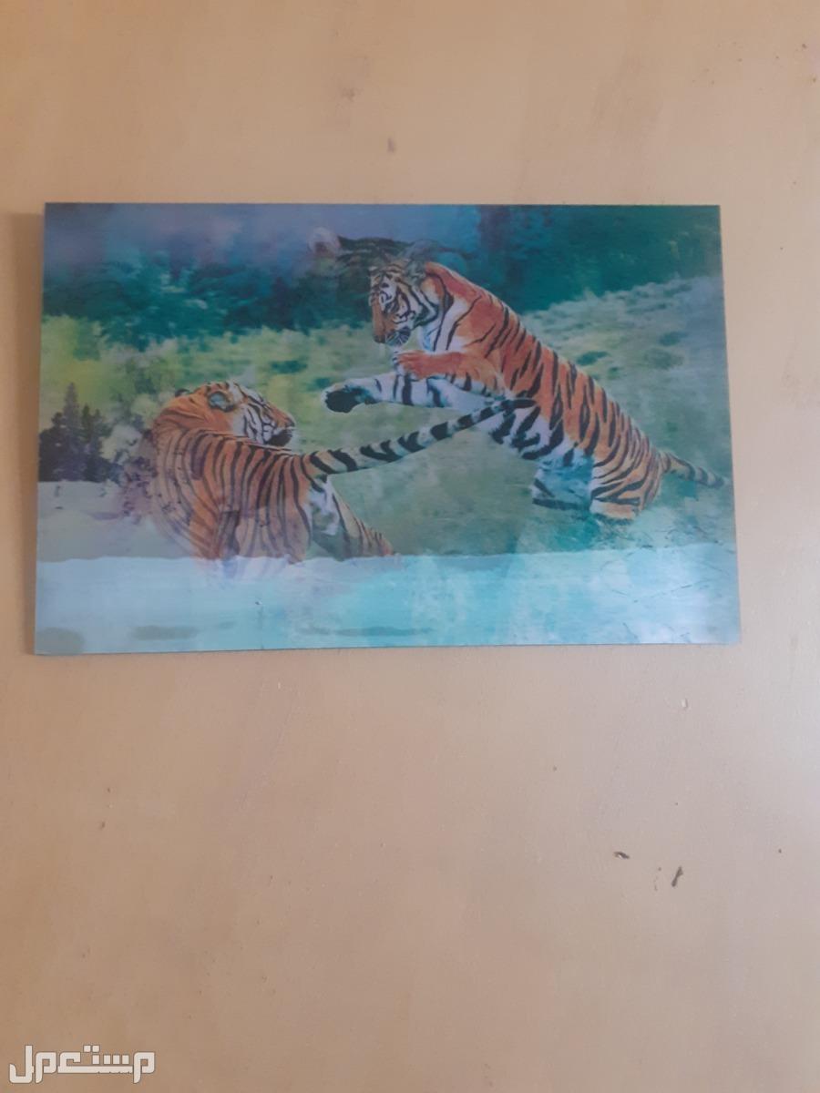 لوحات جداريه فخمه على السوم