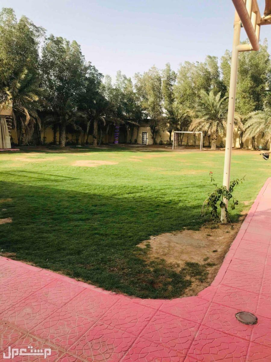 استراحة النجوم شمال الرياض للايجار اليومي قسمين
