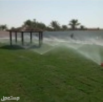 تنسيق الحدائق المنزليّة وخدمات الزراعه