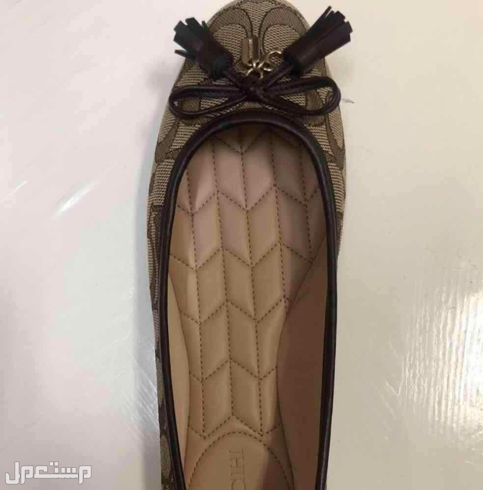 حذاء ماركة كوتش
