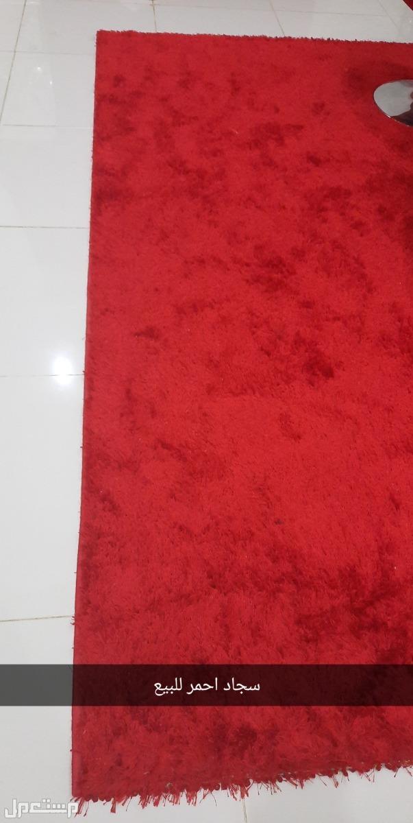 سجاد احمر للبيع
