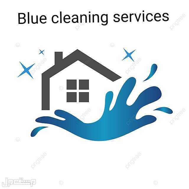 Blue cleaning services