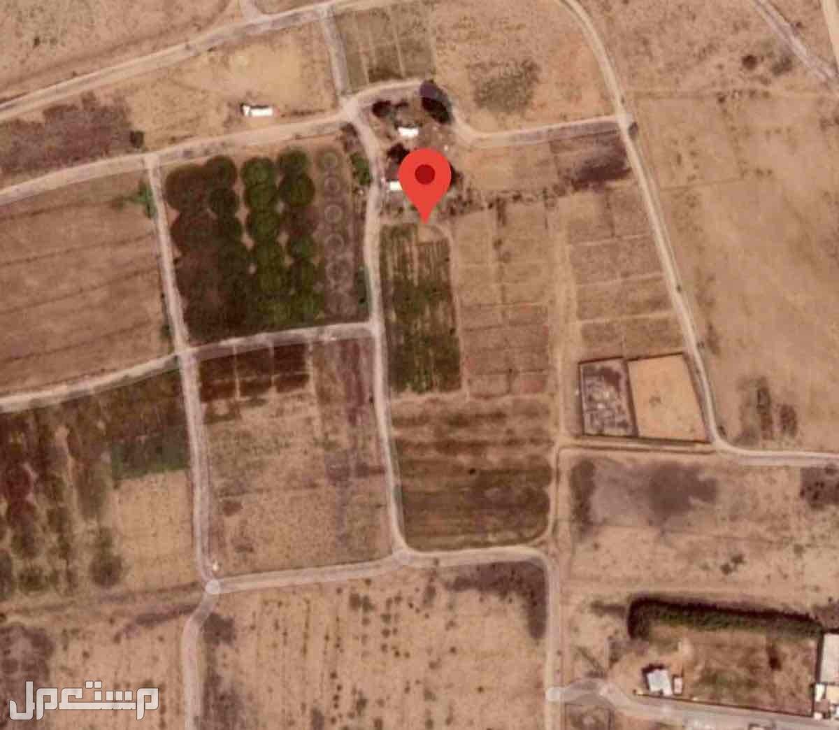 مزرعه للاجار 34 معاد في محافظة ضمد
